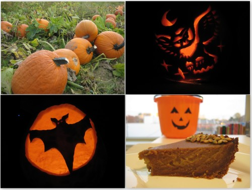 Pumpkin in its many forms
